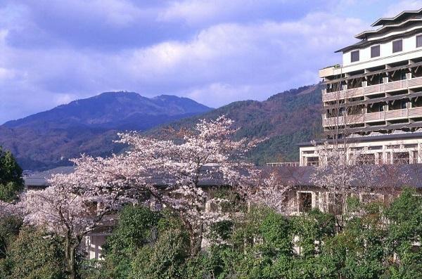 京都こそ、チャペル婚が映える!家族婚におすすめのチャペル3選