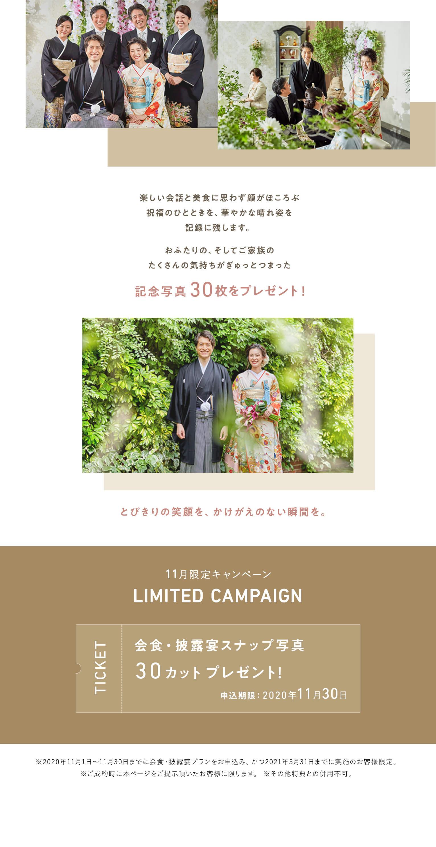 11月キャンペーン