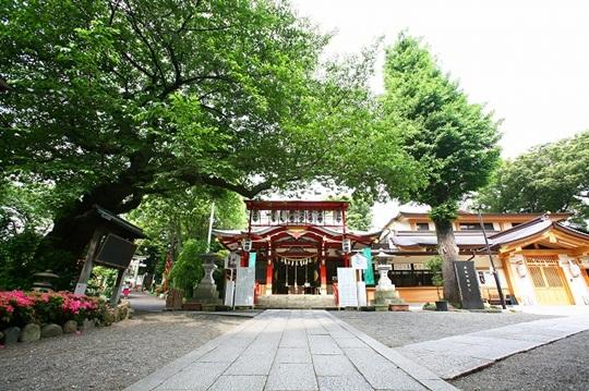 居木神社ギャラリー