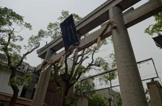 難波八阪神社ギャラリー