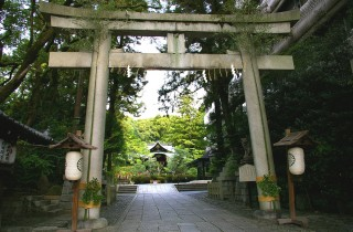 岡崎神社ギャラリー