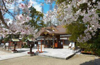 阿部野神社ギャラリー