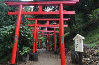 足利織姫神社ギャラリー