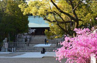 廣田神社ギャラリー